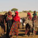 evaluer-un-projet-humanitaire-a-distance-mai-jui-2021